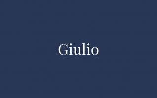 Nowy model - Giulio